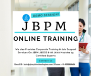 JBPM Online Training and job support service