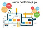 Hire best  web development company for online business